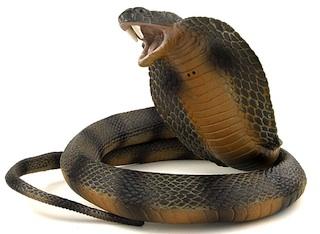 Cobra-snake-plastic-f450